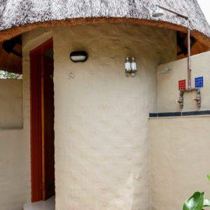Pangolin Hornbill Bush Bathroom Shower