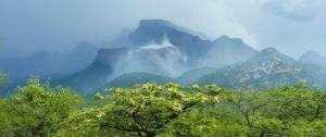Shikwari Nature Reserve - 24-Degrees-South