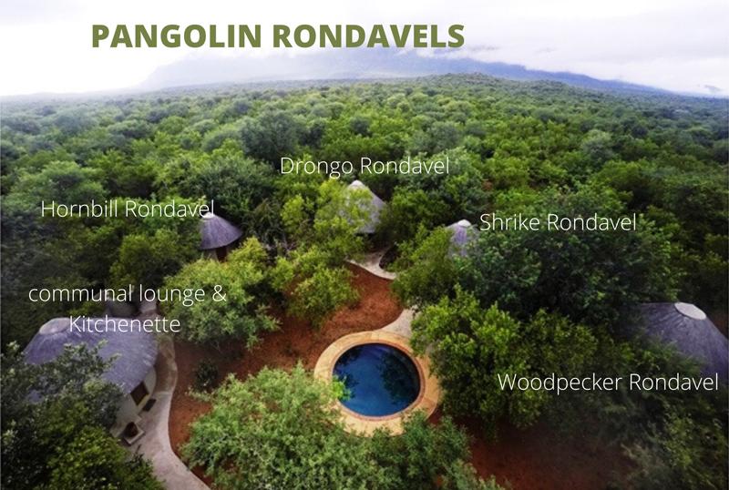 Pangolin Ariel Map