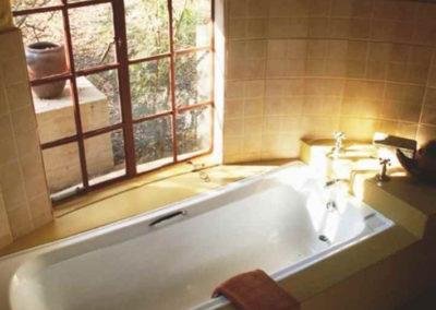 Pangolin Shared Drongo & Shrike shared bath